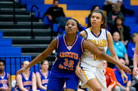 20140116 Argenta Oreana High School vs Maroa Forsyth High School Girls Basketball