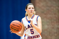 20171116 AOHS vs Williamsville JV Girls Basketball