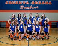 20140207 Argenta Oreana Middle School Volleyball