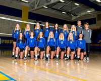 2017 MFHS Volleyball