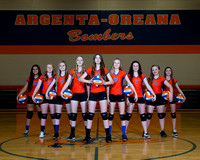 2014-15 AOMS Volleyball
